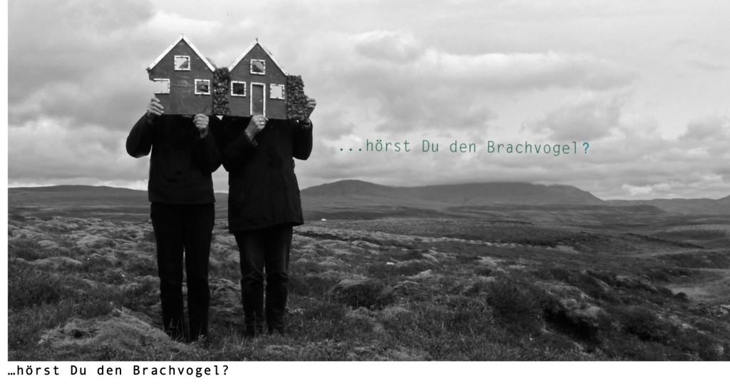 Brachvogel-Einladung-1